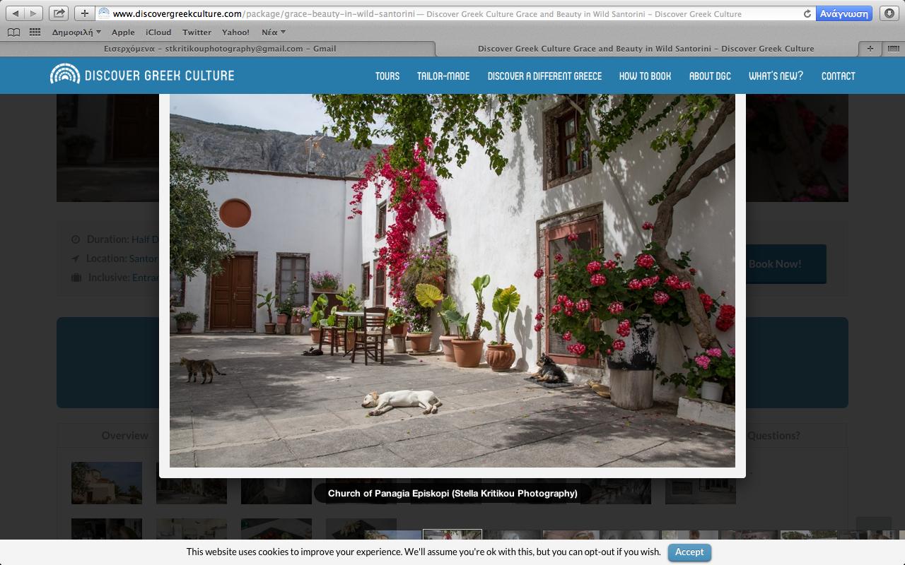 stella kritikou_Discover Greek Culture.png