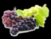 kisspng-niagara-grape-juice-common-grape