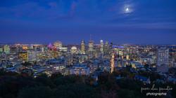 Montréal depuis le Mont Royal