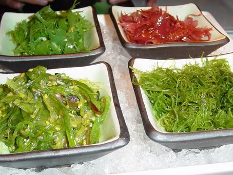 Kelp Processing and Marketing