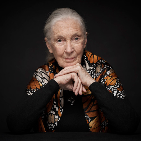 Warrior Women: Dr. Jane Goodall - One Woman's Hope For A Better Future