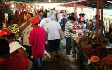 Feira da reforma agrária tem 150 mil visitantes e 220 toneladas de produtos vendidos