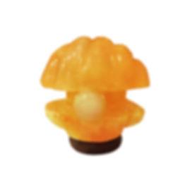 Himalayan Salt Lamp, Shell Pearl Lamp, Pearl Shell Lampshade, Mother Of Pearl Shell Lamp Shades, Mother Of Pearl Shell Lamp, Shell Salt Lamp, Shell Crystal Salt Lamp, Pink Salt Lamp