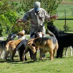 John & the pack