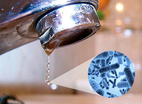 Enfermedades causadas por microorganismos del agua potable