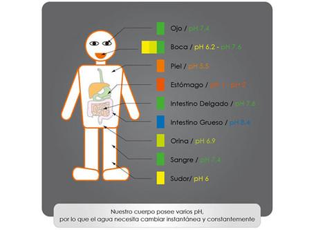 El valor del pH en nuestro cuerpo