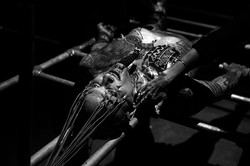 Ron Athey  -  ]Performance Space[