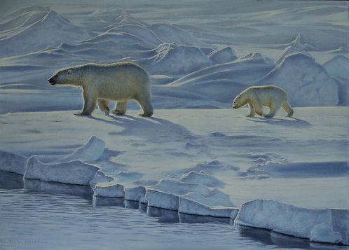 'In Mother's Footsteps' Polar Bears
