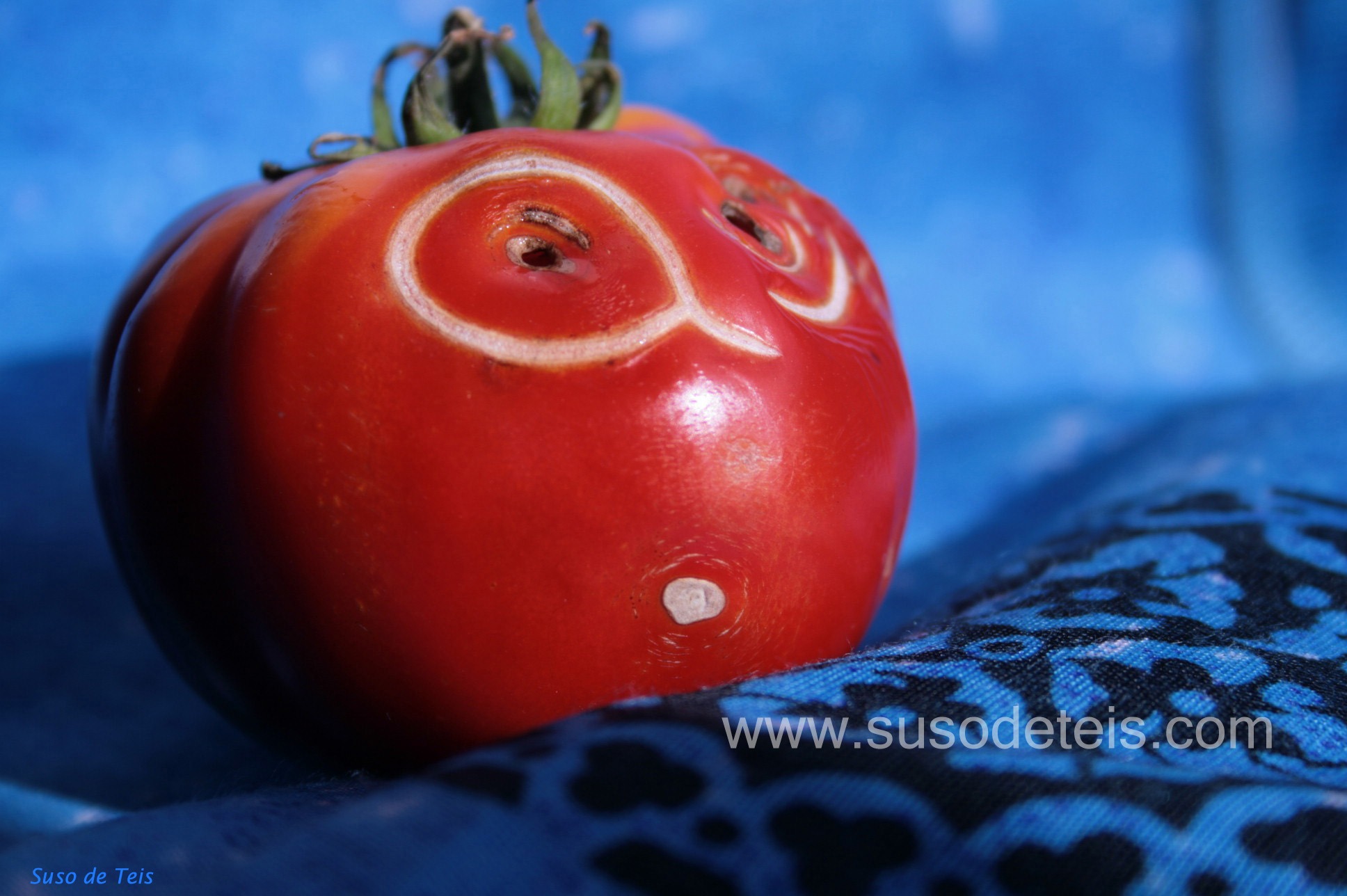 1 tomate