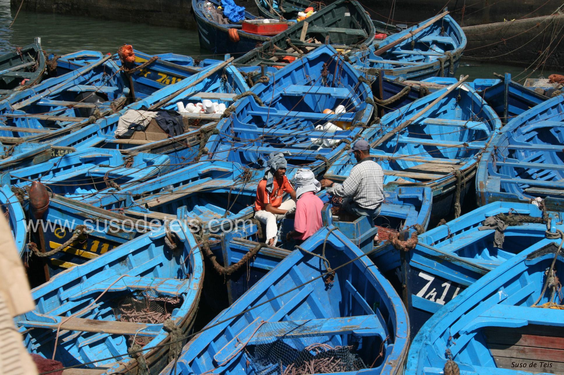 48 barcas