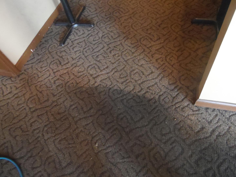 Office Carpet In Progress