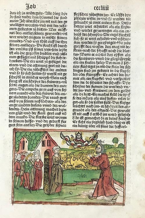 1487 Eleventh High German Bible - Job 42 & Psalm 1