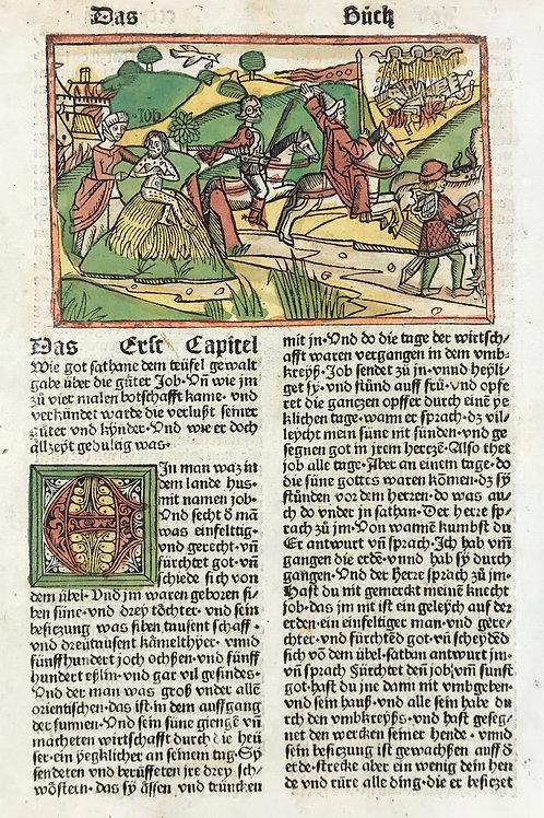 1487 Eleventh High German Bible Job 1