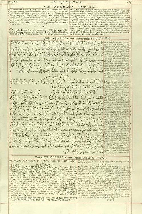 1657 London Polyglot Bible Leaf - Romans 11 - Pages 665-666
