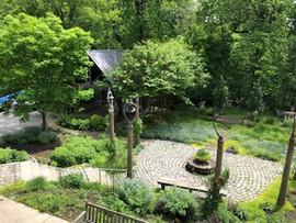 DCH backyard view