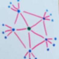 Das MYZELIUM-Netzwerk_ Das MYZELIUM unte