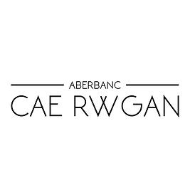 CAE RWGAN.png