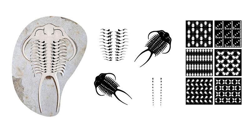 trilobites_finalweb•f.jpg