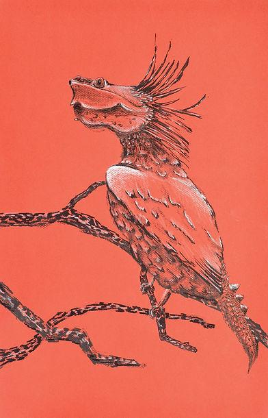 birdturtle_web•a.jpg