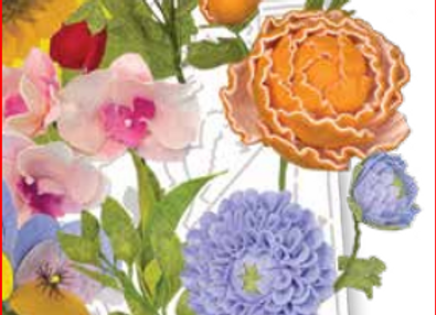 cartamodello stencil fiori di campo N. 50