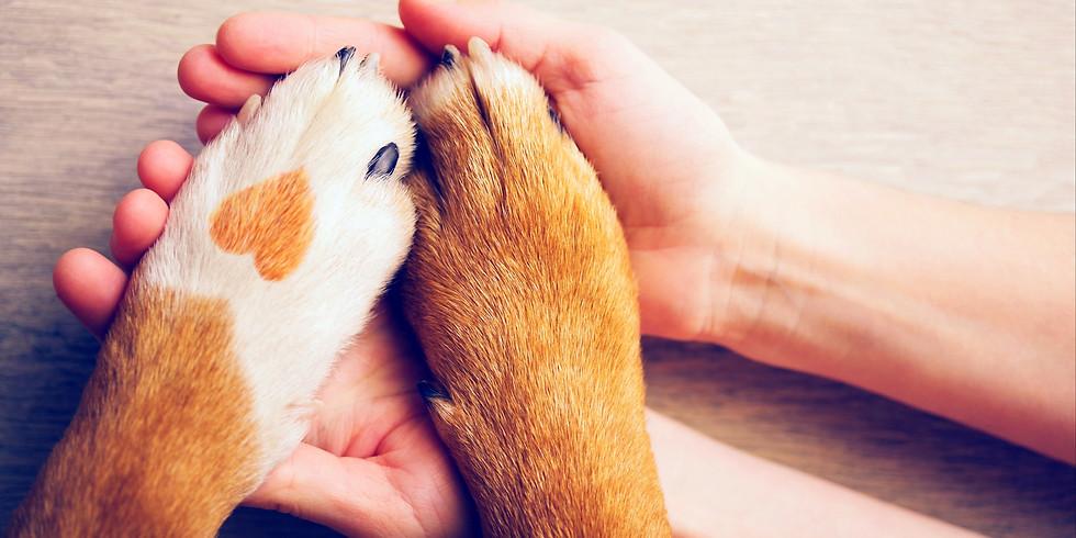 ☆Animal Welfare Brand☆動物愛護を広める活動