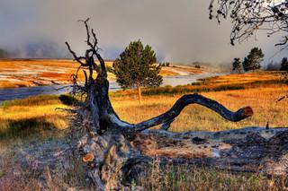 Midway Geyser Basin, Yellowstone NP_resi