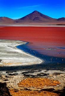 Laguna Colorada, Bolivia_resize.jpg