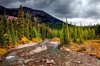 Poboxtan Creek, Jasper National Park, Ca