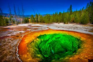 Morning Glory Pool, Yellowstone National