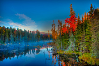 Morning, Algonquin Park, Canada_resize.j