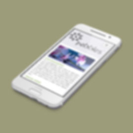 phone with website