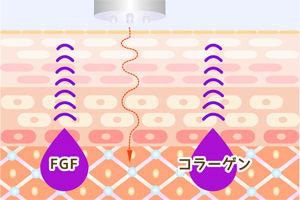 EGF コラーゲン 電気 イメージイラスト Maitrii