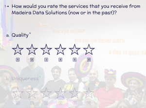 Customer Satisfaction Survey Screenshot