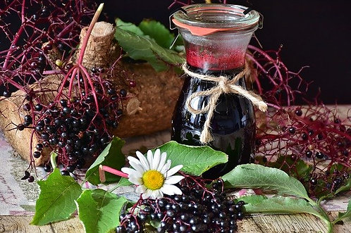 Elderberry Syrup - 8oz
