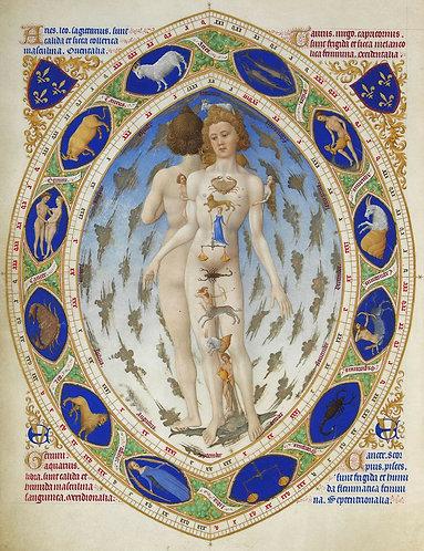 Medicine Making with the Zodiac - Taurus