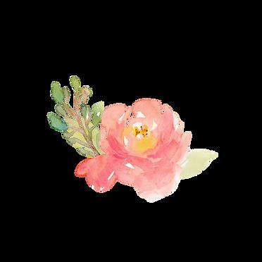 flowertrans3.png