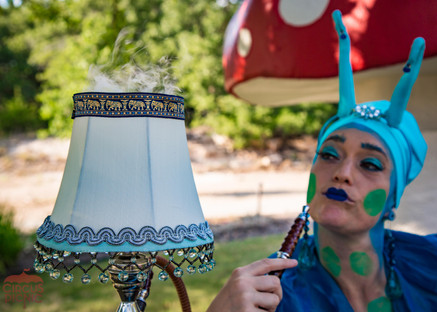 Blue Caterpillar's Lamp, Fortune Telling Activity at Corporate Party in Austin Texas, CIRCUS Picnic Themed Party Scheme, Entertainment Event