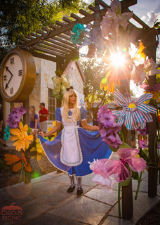 Alice Adventure Down the Hole, CIRCUS PICNIC Fantasy Land Themed Party Concept, The Wonderful Alice Theme, Corporate Event Texas