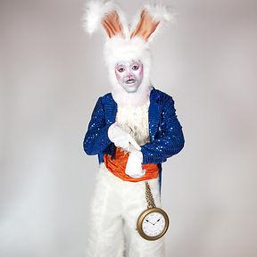 Wonderland Character, White Rabbit, CIRCUS PICNIC Entertainer