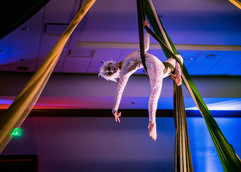 The Aerialists Bend