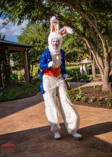White Rabbit Spring Stilt Walker, Wonderland Entertaining Character, Circus Picnic Wonderland Theme Entertainment Event, Fun Party Ideas, Austin Texas