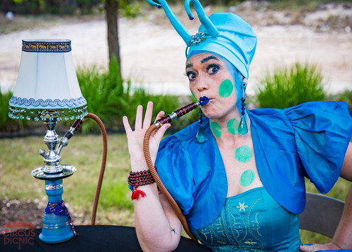 Tarot Reader and Blue Lamp, Wonderland Entertainment Event, CIRCUS PICNIC Themed Party Ideas, Texas