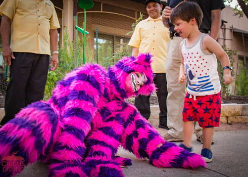 Wonderland Cheshire Mischievous Cat