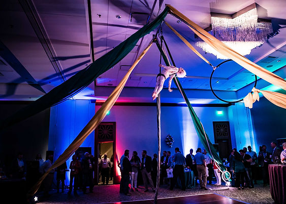 Aerialists Remarkable Performance Encounter at Circus Cirque Themed Party Corporate Event Texas