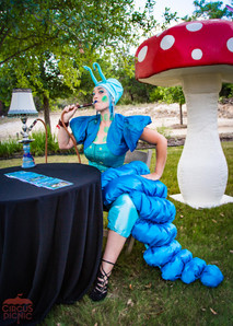 Fortune Telling Caterpillar, Wonderland Characters at Alice in Wonderful Themed Corporate Party, Houston Texas, CIRCUS PICNIC Circus Way