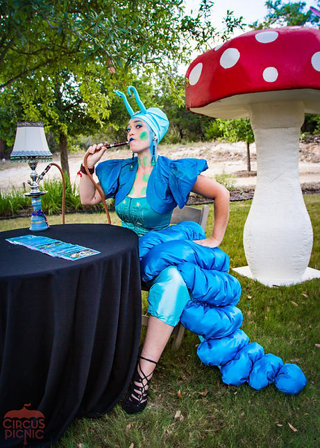 CIRCUS PICNIC Wonderland Fortune Telling Caterpillar, Fortune Cards on Tarot Table