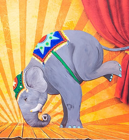 ELEPHANTS On their Toes, Balancing Elephant, Art Expressions, CIRCUS PICNIC Circus Scheme Party, Texas