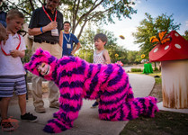 The Wonderful Cheshire Cat, Alice in Wonderful Fantastic Party Experience, CIRCUS PICNIC Event Entertainment Concept, Company Party Scheme