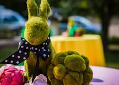 Green Rabbit on the Table, Wonderland Souvenir, Wonderland Themed Party, CIRCUS PICNIC Artistic Event Idea, Austin, Dallas, Houston, San Antonio Texas