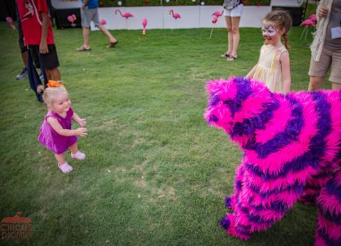 Cat and Guest Happy Moments, CIRCUS PICNIC Creative Event Concept, Texas Corporate Themed Party, Wonderland Themed Event